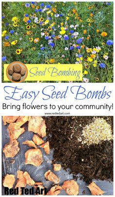 How to make Seed Bombs. Easy Seed Bomb DIY. A great Spring Craft for Kids and Easter Gift