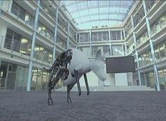 "Mc., 16 Abr 2014 | TECNOLOGIA > HI-TEC - ""El ""Canguro Biónico"", un robot inspirado en la naturaleza""."