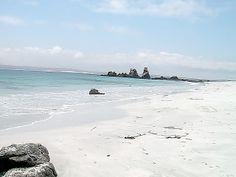 ¿El caribe? No pues, esto es Isla Dama al ladito de Punta de Choros. Uno de los lugares más lindos de #Chile ¿o no?