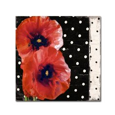 Trademark Color Bakery 'Scarlet Poppies II' Canvas Art