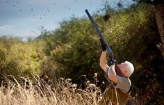 Dove Hunting Tips: The Dos and Don'ts for Opening Day of Dove Season | Outdoor Life