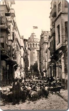 Galata kulsi a flockfo of sheep by the Galata Tower in the Pictures Of Turkeys, Old Pictures, Old Photos, Istanbul Pictures, Empire Ottoman, Istanbul City, Historical Pictures, Places To See, Karting