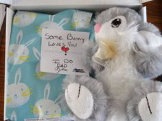 Some Bunny Loves You Care Package