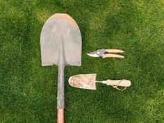 The first step in creating a beautiful yard is having the right tools. Keep your garden gear in great shape year-round with our top cleaning and sanitizing tips.