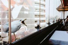 Vagelis Tsivas - Kodak Portra 400NC++