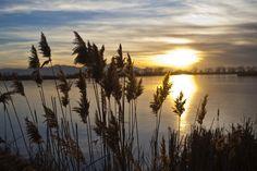 The sun sets over Bountiful Lake along the Legacy Parkway. (Chris Detrick  |  The Salt Lake Tribune)