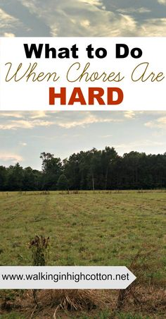 What do we do when chores are hard? 4 strategies for pushing through the tough days and teaching kids diligence. Family Life, Family Rules, Tough Day, Hobby Farms, Raising Kids, Life Skills, Parenting Advice, Farm Life, New Moms