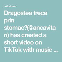 Dragostea trece prin stomac🥰(@ancavitan) has created a short video on TikTok with music sunet original. #fy #fypシ #foryou #cooking #mancare #foodtiktok #food #yummy #gustos Doamne, cat de bun e!!🤤 Cat, The Originals, Cooking, Music, Food, Kitchen, Musica, Musik, Cat Breeds