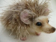 Needle Felted Hedgehog OOAK  by Grannancan by grannancan on Etsy,