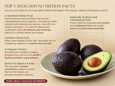Avocado Nutrition 101