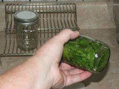 Making Peppermint Extract