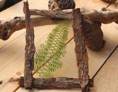 Cadre écorce esprit herbier Invite, Invitations, Frame, Nature, Home Decor, Herb Box, Frames, Spirit, Picture Frame
