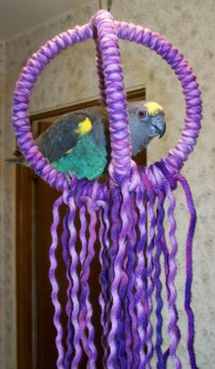 Small Parrot Purple 3 Ring Orbit Swing by Parrotparlor on Etsy, $10.00