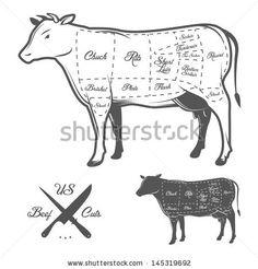 American cuts of beef by Ivan Baranov, via Shutterstock