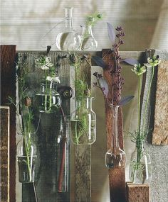 Foliage Hanging Vases - set of 8, $64.99 (http://www.roostready.com/vases/foliage-hanging-vases-set-of-8/)