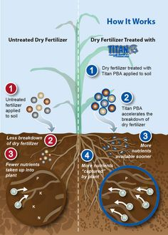 How Titan PBA works to release nutrients for plant utilization and growth. Titan PBA is a biochemical fertilizer catalyst specifically formulated for use with dry blends.
