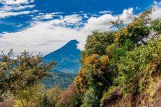 ¡Estamos rodeados de naturaleza y queremos compartirla contigo!  Finca Filadelfia a 45 minutos de la Ciudad de Guatemala  www.filadelfia.com.gt  #antigua #guatemala #semanasanta