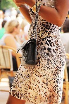 Leopard love♥