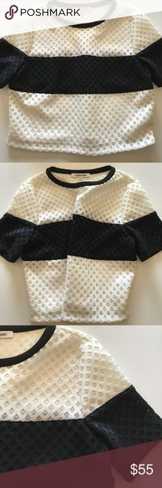 Elizabeth and James💁🏼 Elizabeth and James talk in a size large. Elegant light cream and black waffle material. Is somewhat of a crop top. Sleeves go just above the elbow's. Fuck element is a poly nylon combo👠 Tops Crop Tops