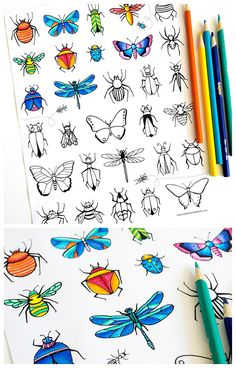 Free printable bugs, insects & butterflies coloring page that parents & teachers can print for preschool, kindergarten & elementary school kids.