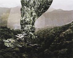 Caio Reisewitz, 'Curahy,' 2009, Galería Joan Prats