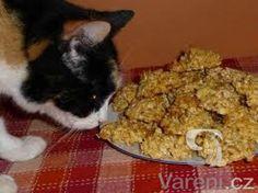 Recept na skvělé a rychlé ovesné sušenky. Dog Food Recipes, Baking, Pets, Healthy, Bakken, Dog Recipes, Health, Backen, Sweets