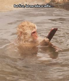 I love this not because of the caption, but because of what must have happened for the monkey to end up with the phone. In the water.