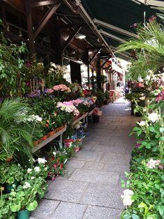 Flower shop  Rue de Buci 75006 Paris France