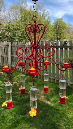 80 Awesome Spring Garden Decoration Ideas For Backyard & Front Yard - About Expert Design Hummingbird Garden, Hummingbird Food, Hummingbird Feeders Diy, Hummingbird Nectar, Diy Chandelier, Chandelier Creative, Humming Bird Feeders, Climbing Roses, Backyard Birds