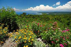 [Licup Viewpoint Garden]    Licup Viewpoint  Island Garden City of Samal  Davao del Norte, Philippines