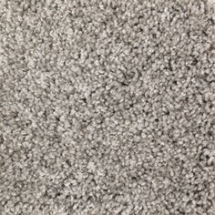 Carpet Designer Twist Platinum S Ea091 Warm Oatmeal