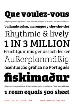Bree Serif! A young and energetic upright italic that approaches readers with hip and somewhat elegant charm.  If you loved the multi-award wining Bree, you will surely love its seriffed cousin!