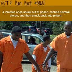 Inmates escape prison and sneak back into it again - WTF fun fact