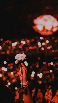Image about flowers in shawn mendes 💕 by mendeslyrics Shawn Mendes Tour, Shawn Mendes Quotes, Shawn Mendes Wallpaper, Shawn Mendes Concerto, Photo Wall Collage, Red Aesthetic, Music Aesthetic, Aesthetic Videos, Aesthetic Wallpapers