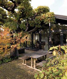 love this backyard and house exterior Dream Garden, Home And Garden, Outdoor Spaces, Outdoor Living, Garden Design, House Design, My Dream Home, Garden Inspiration, Interior And Exterior