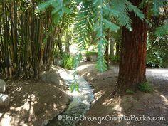 Fullerton Arboretum: