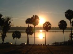 "Lake Wauburg, as featured in our ""5 Best Local Dates"" story in our February 2008 issue. #INsite #gainesville #florida #magazine #lakewauburg #localdates"