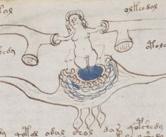 An image from the Voynich manuscript.  A centuries-old manuscript with mysterious writing and illustrations which remains undeciphered, and whose purpose is unknown..