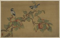 Chinese Art   Birds and Fruit   F1911.502e