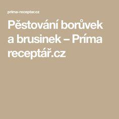 Pěstování borůvek a brusinek – Príma receptář.cz Pesto