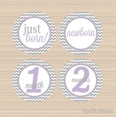 Grey and Lavender Chevron Month by Month by PaperTreePrintables, $6.00