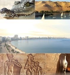 & Explore Egypt, Jobs, News, Certification Country Information, Teaching English, Certificate, Egypt, Fantasy, Explore, News, Fantasy Movies, Fantasia