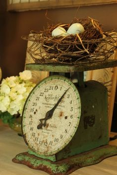 chippy rusty green scale - and nest! Is there anything that doesn't look cute on an old scale?