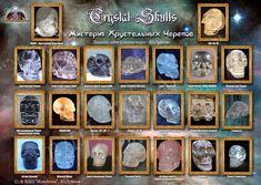 Crystal Skull, Money Clip, Crystals, Money Clips, Crystal, Crystals Minerals