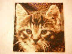 Hama Bead Cat Portait by TheFeltCastle