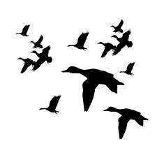 Duck Flying Silhouette - ClipArt Best
