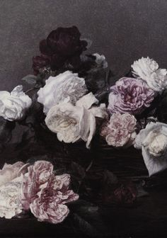 mysterious floral x
