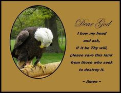 Dear GOD, I bow my head and ask, if it be THY will, please save this land from those who seek to destroy it. Amen