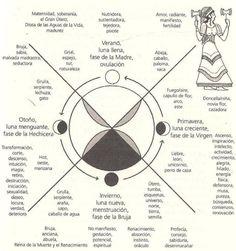 El ciclo menstrual es un ciclo natural creativo. Biológicamente, el ciclo menstrual está hecho para dar vida, es por esto que el cuerpo de la mujer luna a luna va acumulando energía que será…