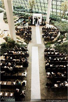 beautiful - Wedding at Westin Southfield Atrium